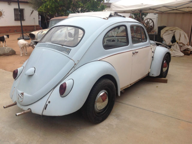 vw volkswagen beetle bug ragtop rag cream light blue  reserve project