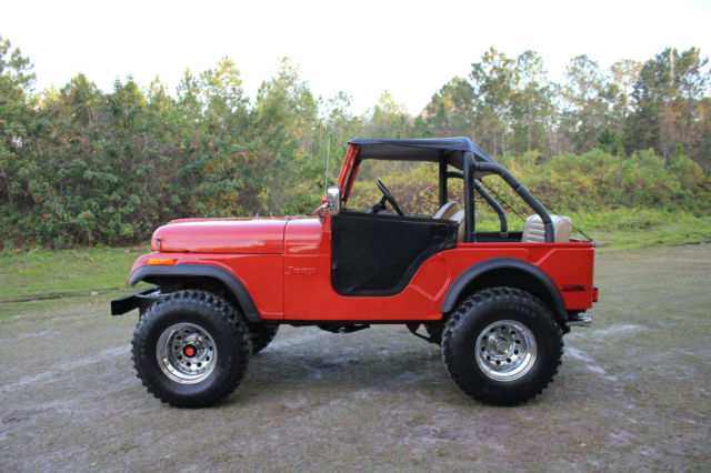 1974 jeep cj5 4x4 sport utility 2 door v8 5 0l cj 5 clean. Black Bedroom Furniture Sets. Home Design Ideas