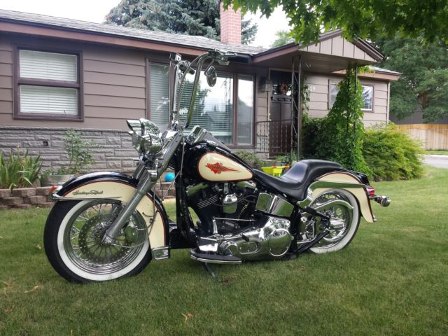 Softail Dealer Washington >> Gator Harley Davidson Located In Leesburg Fl Harley | Autos Post