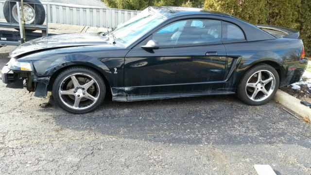 1999 Ford Mustang Black SVT Cobra 48,000 Miles Lowered 3 ...