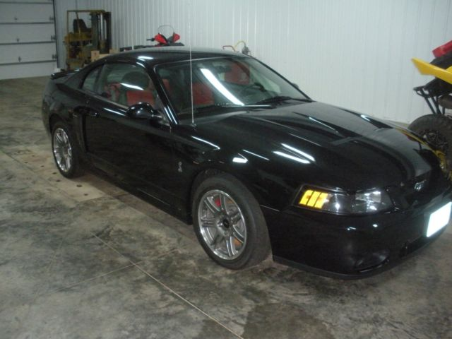 2003 ford mustang svt cobra terminator 10th anniversary. Black Bedroom Furniture Sets. Home Design Ideas