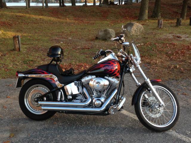 Harley Davidson Softail Standard Owner
