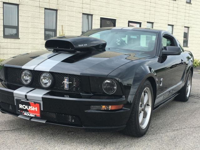 2006 ford mustang gt supercharged roush cobra custom ram air. Black Bedroom Furniture Sets. Home Design Ideas