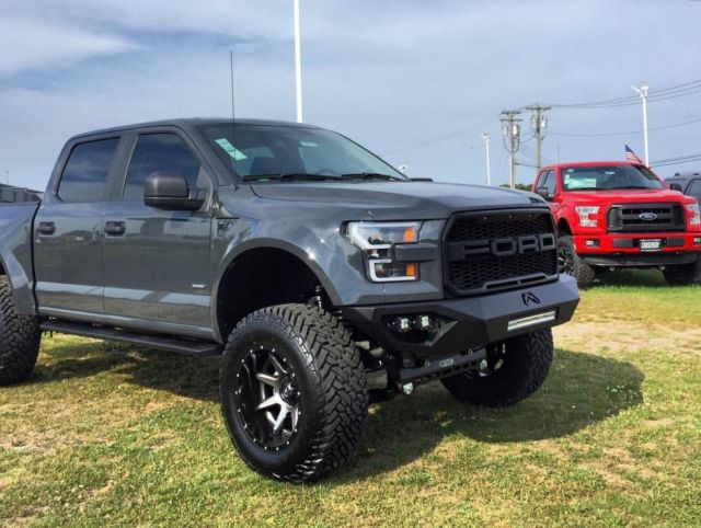 2016 ford f 150 baja conversion raptor. Black Bedroom Furniture Sets. Home Design Ideas