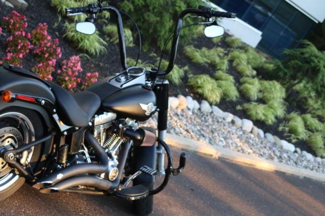 Harley Davidson Fatboy W Carlini Design Bars