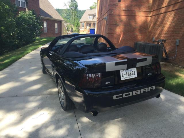 Mustang Terminator Cobra Specs