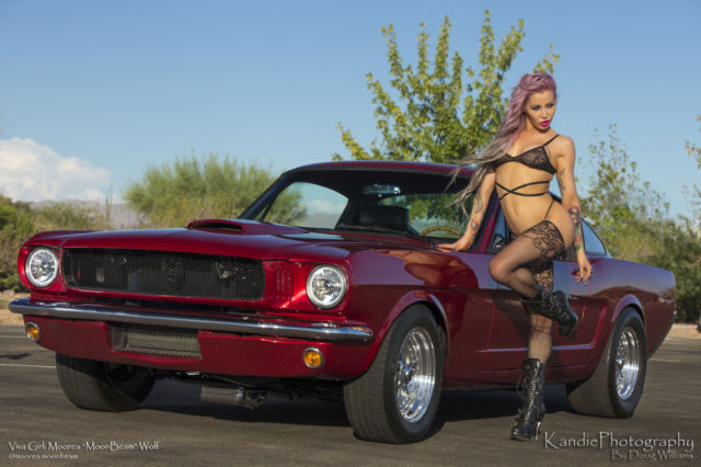 Show Winning 1965 Ford Mustang Fastback Gt Pro Touring Rhs